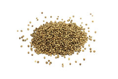 Coriander seeds Royalty Free Stock Image