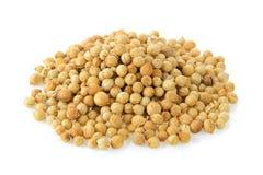 Coriander seeds. On white background Stock Photos