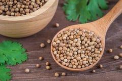 Coriander seeds on wooden spoon Stock Photo
