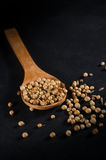 Coriander seeds on wooden spoon Stock Images