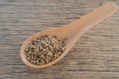 Coriander seeds,Wooden spoon,Wooden floor. Coriander seeds in Wooden spoon placed on wooden floor.focus on coriander seeds Stock Photos