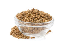 Coriander spices in bowl Royalty Free Stock Image