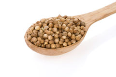 Coriander spices in spoon on white. Background stock images