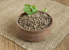 Coriander. On a table in a rustic style royalty free stock image