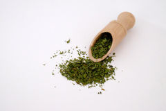 Coriander in a wooden blade. On a white surface Stock Image