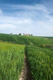 Corinaldo Marche Italia foto de archivo libre de regalías