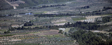 Corinth krajobraz, Grecja Obraz Royalty Free
