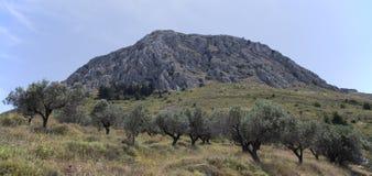 Corinth landskap, Grekland Fotografering för Bildbyråer