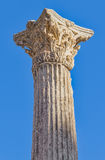 Corinthian column Stock Images
