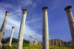 Corinthian columns. Roman archaeological site of ancient city of Salamis in Cyprus Stock Photo