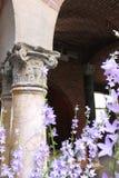 Corinthian Columns with lavender flowers Stock Photo