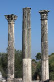 Corinthian columns Royalty Free Stock Images