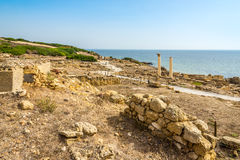 Corinthian columns and ruins of ancient Tharros in Sardinia Royalty Free Stock Images