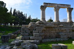 Corinthian order columns in ancient Corinth. Stock Photos