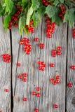 Corintos vermelhos com as folhas verdes na tabela de madeira, como a chuva, ideia criativa para a colheita Imagens de Stock