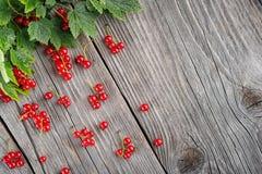 Corintos vermelhos com as folhas verdes na tabela de madeira, como a chuva, ideia criativa para a colheita Fotografia de Stock