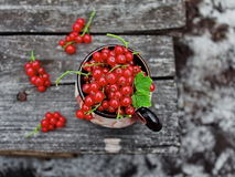 Corintos vermelhos em um copo Fotografia de Stock Royalty Free