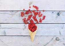 Corintos vermelhos frescos maduros no cone do waffle do gelado no fundo de madeira rústico Fotografia de Stock Royalty Free