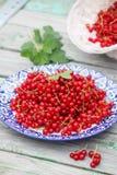 corintos vermelhos orgânicos de corintos vermelhos na placa Imagem de Stock Royalty Free