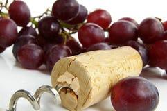 cork винт стоковое фото rf