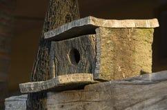 cork гнездй Стоковые Фотографии RF