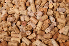 Cork. Many different cork from vine royalty free stock photos