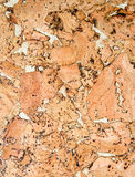 Cork Background Or Texture Royalty Free Stock Images