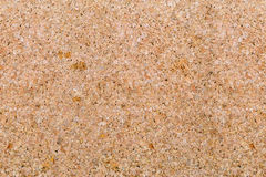 Cork background texture. Detailed empty cork board texture for background Royalty Free Stock Photography