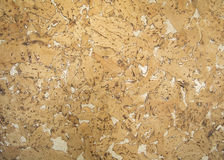 Cork background texture (detailed view) Stock Photography