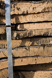 Cork bark Royalty Free Stock Photography