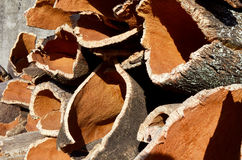 Cork bark Stock Photo