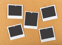 Free Cork Board Royalty Free Stock Images - 64629659
