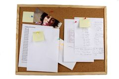 Cork board Royalty Free Stock Image