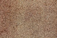 Cork board. In close-up Stock Image