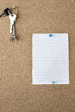 Cork board with note Royalty Free Stock Photo