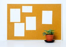 Cork board with paper notes for editing royalty free stock image