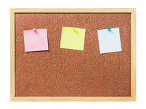 Cork board with plastic pins Stock Photography