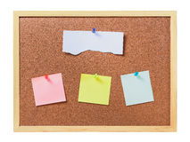 cork board with plastic pins and blank notes  Stock Photos