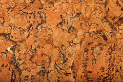 Cork board texture or background, large elements Royalty Free Stock Image