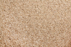 Cork board texture Royalty Free Stock Photos