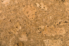 Cork board texture. With large pattern Stock Images