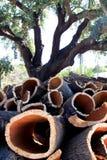 Cork eiken en gestapelde schors in Alentejo, Portugal Royalty-vrije Stock Foto