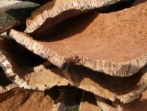 Cork layers. Stack of oak's bark used to produce corks for wine bottles stock images