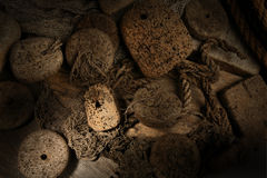 Cork in net. With wood background Stock Images