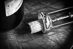 Cork stopper of italian wine Stock Images