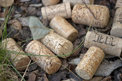 Cork stoppers Stock Photos