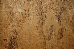 Cork texture. Stock Image