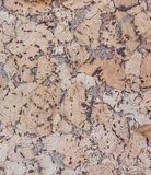 Cork texture, large emulsion pattern. Multi color royalty free stock photo