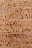 Cork texturerar Royaltyfria Bilder