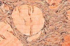Cork Textuur Royalty-vrije Stock Afbeeldingen